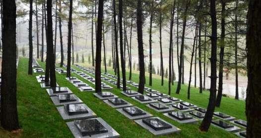 惠州一女子夜深滴滴打车被带至墓园,投诉司机坚称误会了乘客终点站资讯生活